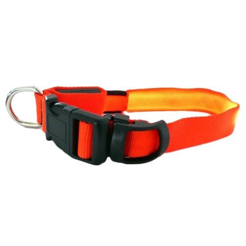 Sécurité et protection - Collier pour chien à flash lumineux pour chiens