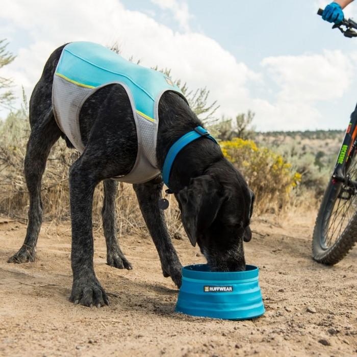 Manteau & compagnie - Veste rafraîchissante Jet Stream pour chiens