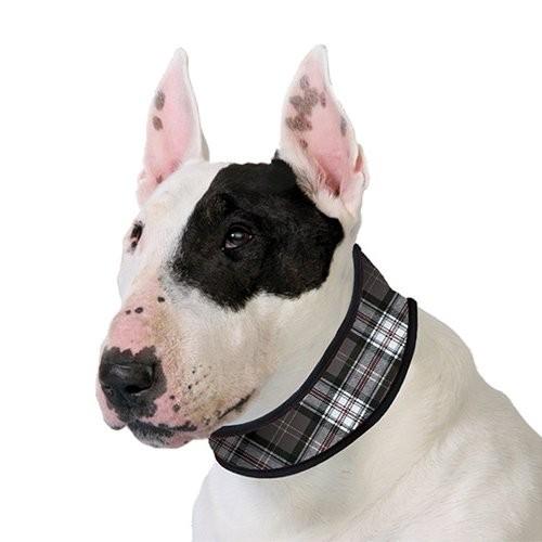 Manteau & compagnie - Collier rafraîchissant gris pour chiens