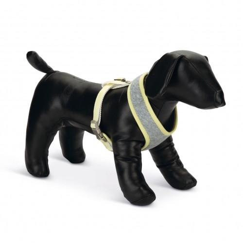 Collier, laisse et harnais - Harnais Bronda pour chiens