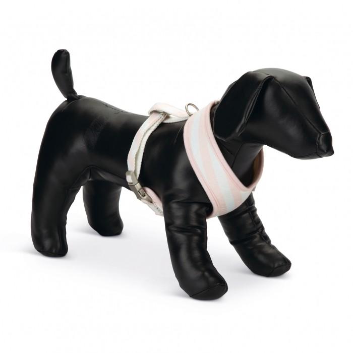 Collier, laisse et harnais - Harnais Filana pour chiens