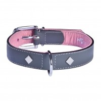 Collier pour chien - Collier Tomy - Gris Bobby