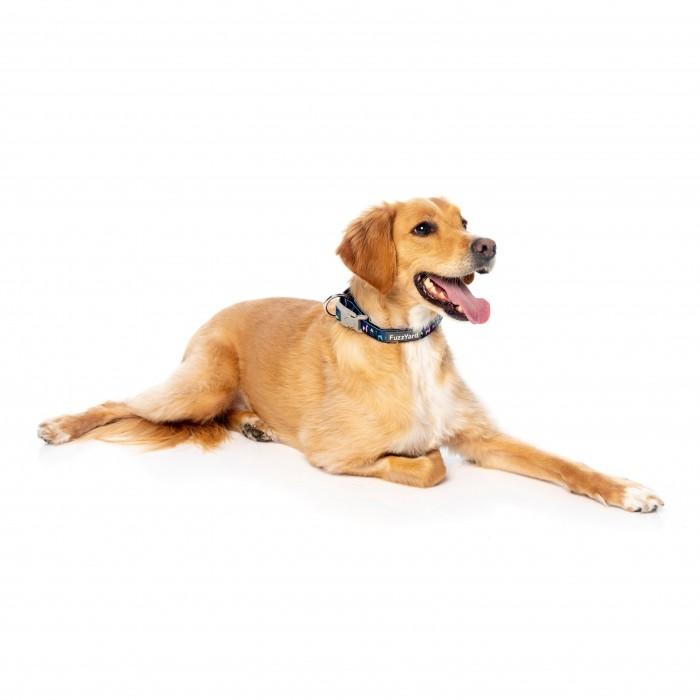 Collier, laisse et harnais - Collier No Probllama pour chiens
