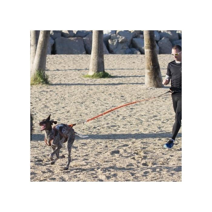 Collier, laisse et harnais - Harnais Canicross X-BACK ONE pour chiens