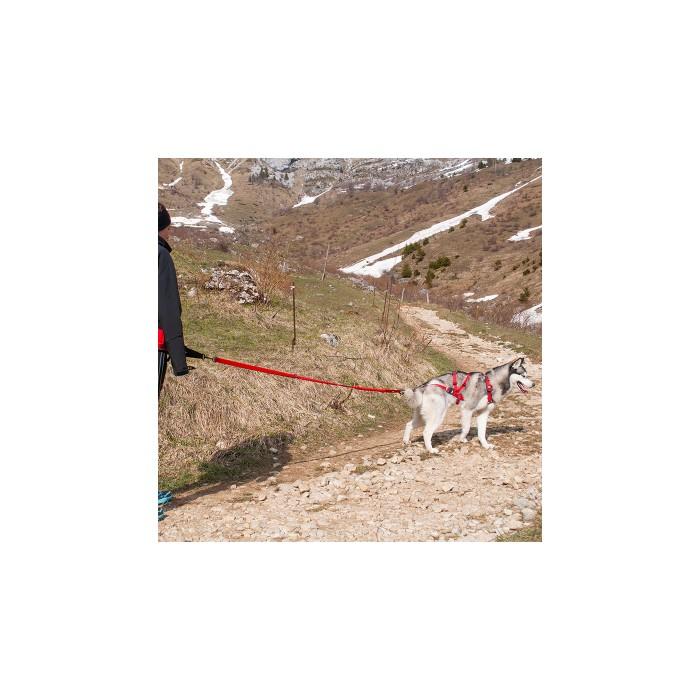 Collier, laisse et harnais - Harnais Confort Trek pour chiens