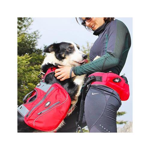 Collier, laisse et harnais - Baudrier Confort Trek pour chiens