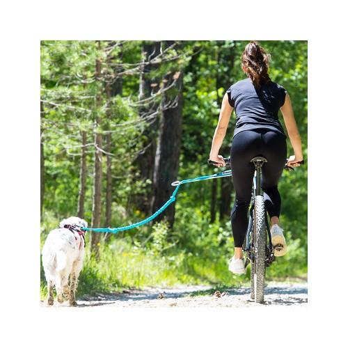 Collier, laisse et harnais - Barre VTT Link ALM pour chiens