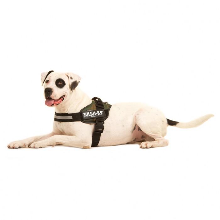 Collier, laisse et harnais - Harnais IDC Power Camouflage pour chiens