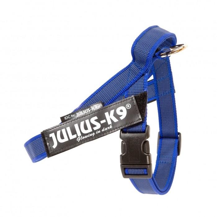Collier, laisse et harnais - Harnais IDC Belt Color & Gray Bleu pour chiens