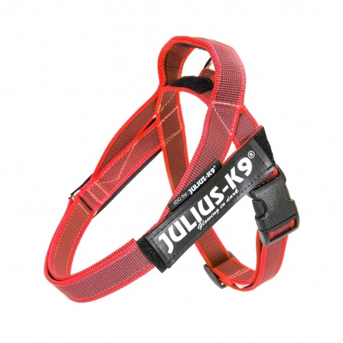 Harnais pour chien - Harnais IDC Belt Color & Gray Rouge Julius-K9