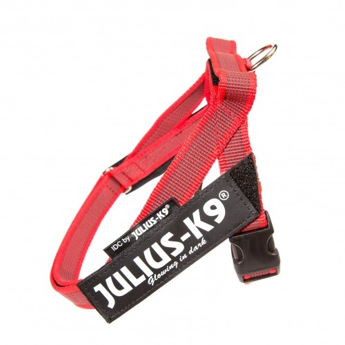 Collier, laisse et harnais - Harnais IDC Belt Color & Gray Rouge pour chiens