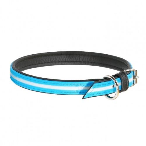 Collier, laisse et harnais - Collier IDC Lumino - Bleu aquamarine pour chiens