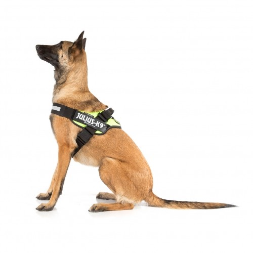 Collier, laisse et harnais - Harnais IDC Power Fluo pour chiens