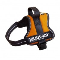 Collier, laisse et harnais - Harnais K9 Power Orange