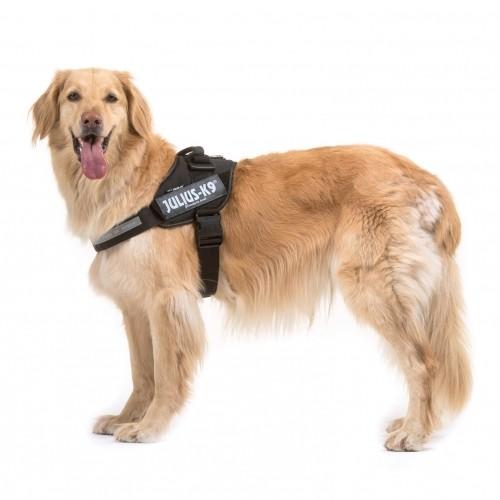 Collier, laisse et harnais - Harnais IDC Power Noir pour chiens