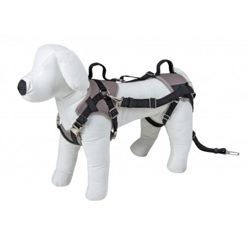 Collier, laisse et harnais - Harnais de sécurité Travel Protect pour chiens