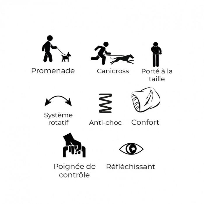 Sélection Made in France - Laisse ceinture élastique Otium pour chiens