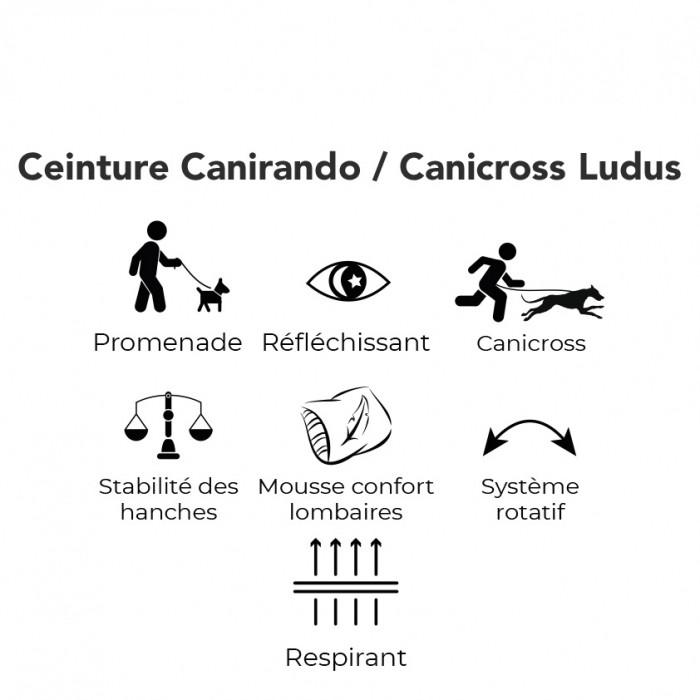 Collier, laisse et harnais - Ceinture Ludus pour cani-rando, canicross  pour chiens
