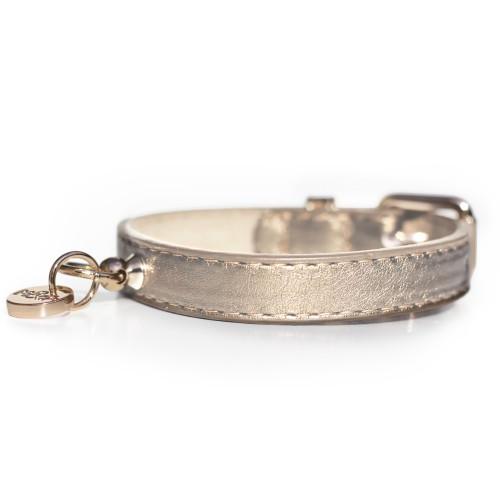 Collier, laisse et harnais - Collier Shine Gold pour chiens