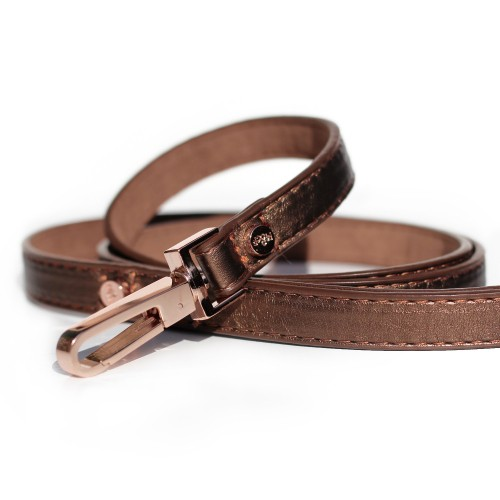 Collier, laisse et harnais - Laisse Shine Copper pour chiens