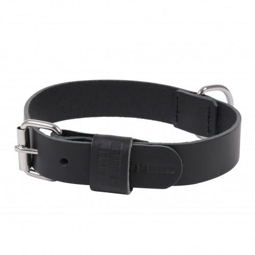 Collier, laisse et harnais - Collier Basic en cuir noir pour chiens