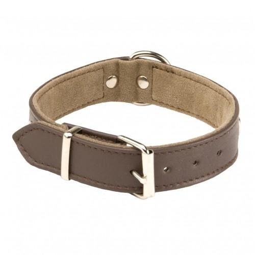 Collier, laisse et harnais - Collier Sportswear pour chiens