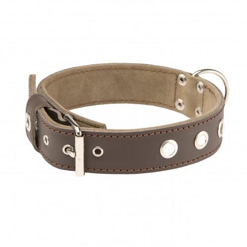 Collier, laisse et harnais - Collier Alter Ego Sportswear pour chiens