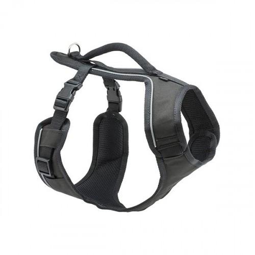 Harnais pour chien - Harnais EasySport  Petsafe