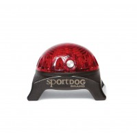 Pendentif lumineux pour chien - Lampe pour collier SportDog