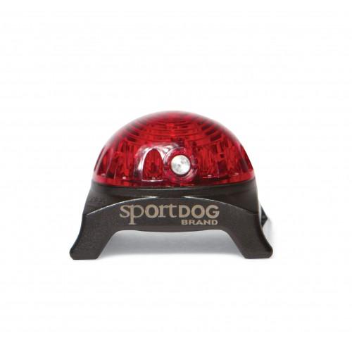 Lampe pour collier pendentif lumineux pour chien sportdog wanimo - Lampe chauffante chiot ...