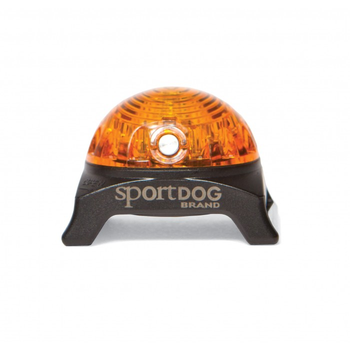 Sécurité et protection - Lampe pour collier pour chiens