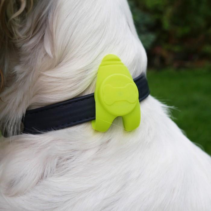 Sécurité et protection - Pendentif lumineux pour chiens
