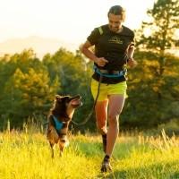 Accessoire de canicross - Ceinture Trail Runner Ruffwear