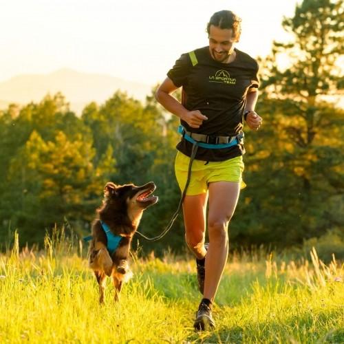 Collier, laisse et harnais - Ceinture Trail Runner pour chiens
