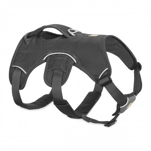 Collier, laisse et harnais - Harnais Web Master - Gris pour chiens