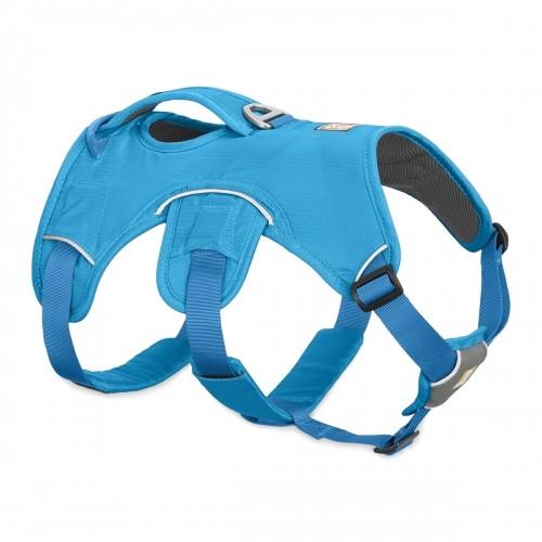 Collier, laisse et harnais - Harnais Web Master - Bleu pour chiens