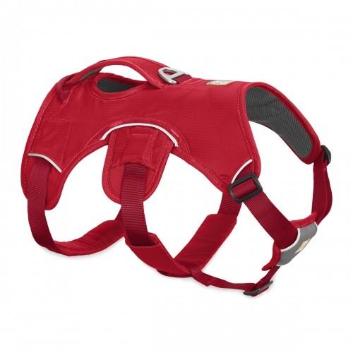 Collier, laisse et harnais - Harnais Web Master - Rouge pour chiens