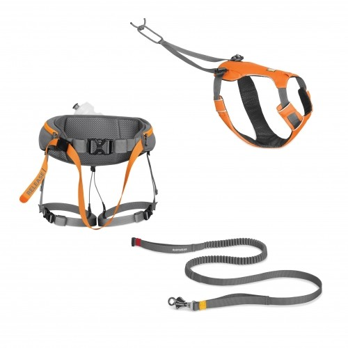 Sports Canins - Kit Omnijore Joring System pour chiens