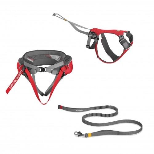 Collier, laisse et harnais - Kit Omnijore Joring System pour chiens