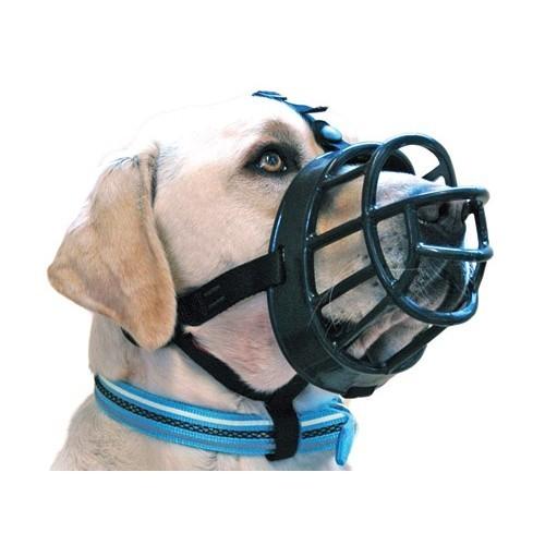 Collier, laisse et harnais - Muselière Baskerville Ultra pour chiens