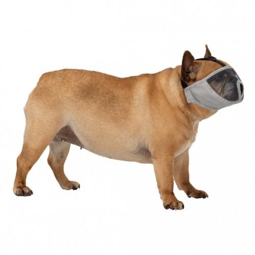 Collier, laisse et harnais - Muselière pour museau court pour chiens