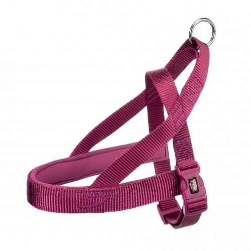 Collier, laisse et harnais - Harnais Comfort Premium - L pour chiens