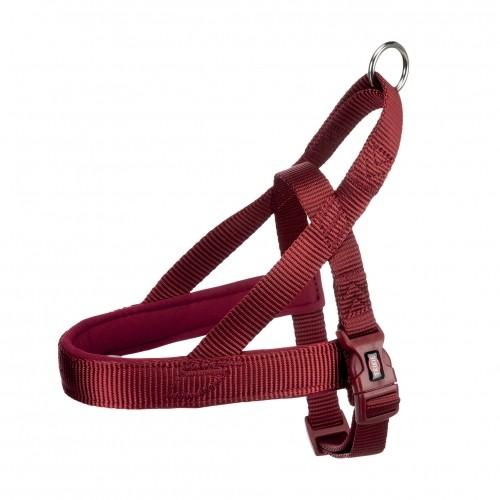 Collier, laisse et harnais - Harnais Comfort Premium - L/XL pour chiens