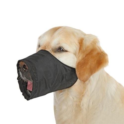 Collier, laisse et harnais - Muselière Nylon pour chiens