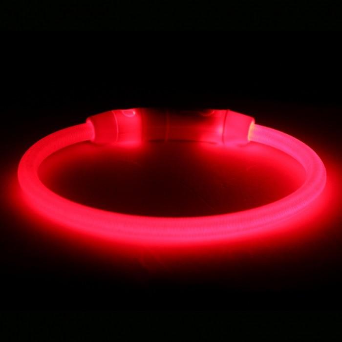 Collier, laisse et harnais - Anneau lumineux USB Safer Life pour chiens