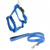 Laisse et harnais pour chien - Laisse et harnais Premium T.M Vitakraft