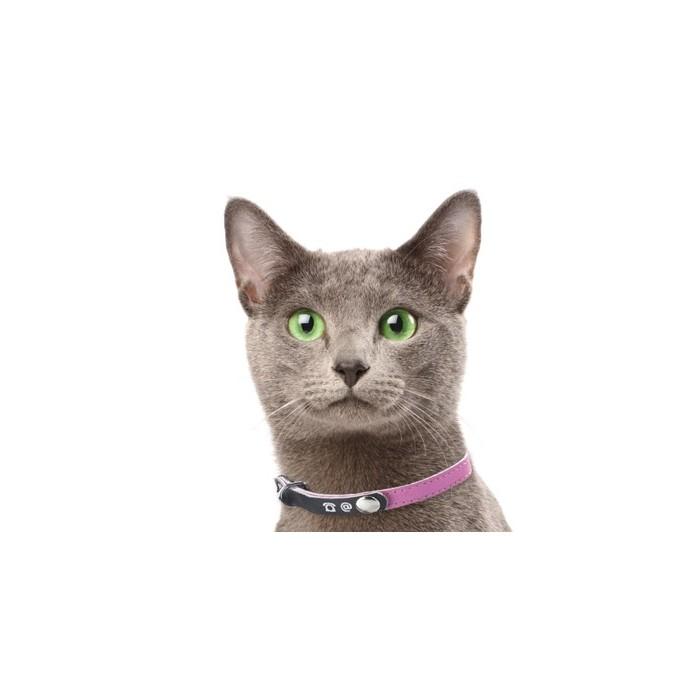 Collier, laisse et harnais - Collier porte-adresse réfléchissant pour chats