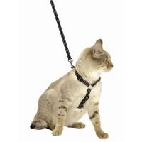 Harnais pour chat - Parure laisse et harnais Safe Bobby