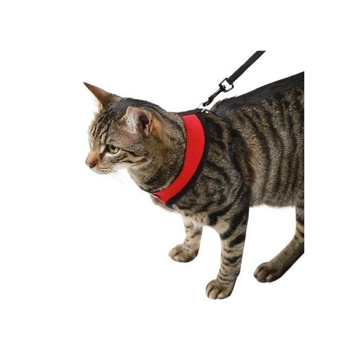 Collier, laisse et harnais - Harnais et laisse Active pour chats