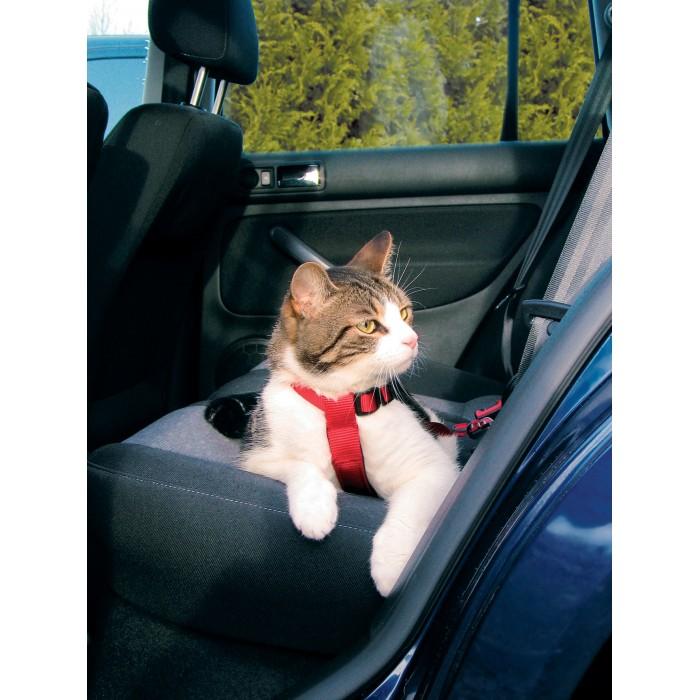 Transport du chat - Harnais de sécurité pour voiture pour chats